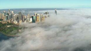Rozlała się nad miastem, przykryła budynki. Gęsta mgła w Sydney