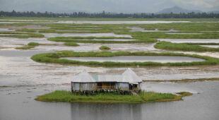 Phumdis - wyspy dryfujące po jeziorze Loktak