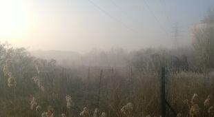 Poranne mgły na warszawskiej Sadybie (tvnmeteo.pl/js)