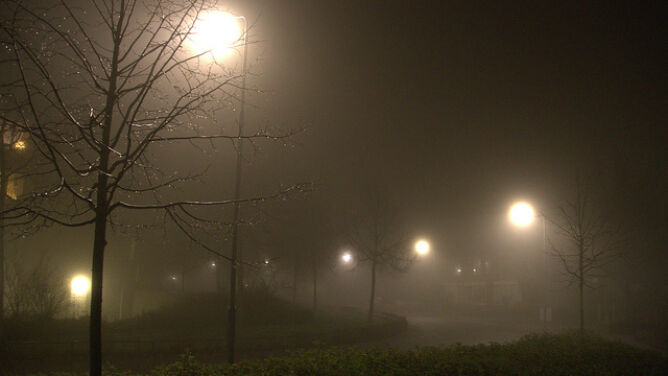 Pogoda na jutro: mglista noc, w dzień do 7 stopni Celsjusza