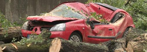 Powalone przez wiatr drzewo przygniotło samochód. Burzowy piątek w Polsce