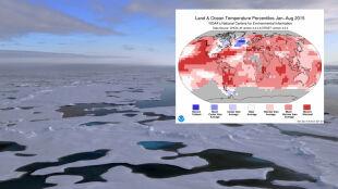 Dziwna plama na mapie ciekawi naukowców. Stawia opór globalnemu ociepleniu?
