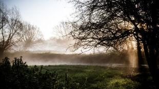 Pogoda na dziś: aura poprawi samopoczucie. Nawet jeśli cały dzień spędzicie w domu